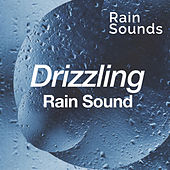 Drizzling Rain Sound by Rain Sounds
