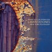 Lamentationes de New York Polyphony