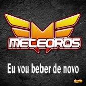 Eu Vou Beber de Novo by Meteoros