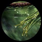 Dream Mood, Pt. 32 - EP de Various Artists