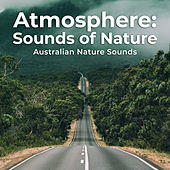 Atmosphere: Sounds of Nature von Various Artists