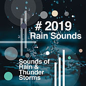 # 2019 Rain Sounds by Sounds of Rain