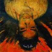 Dazed In Alico de Daniel Delacour