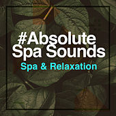# Absolute Spa Sounds by S.P.A