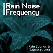Rain Noise Frequency by Rain Sounds
