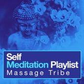 Self Meditation Playlist de Massage Tribe