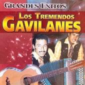 Grandes Exitos de Los Tremendos Gavilanes