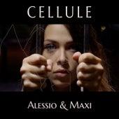 Cellule von Alessio