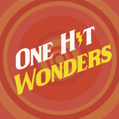One Hit Wonders di Various Artists