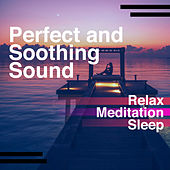 Perfect and Soothing Sound de Relax Meditation Sleep