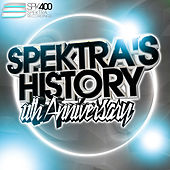 Spektra's History, Vol. 8: 11th Anniversary von Various