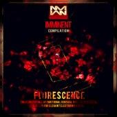 Florescence - EP von Various Artists
