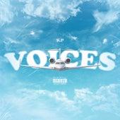 Voices von KP