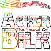 The Sound Of de Acker Bilk