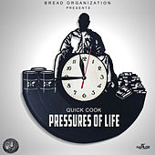 Pressures of Life by Quick Cook