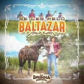 Se Les Peló Baltazar by Energía Norteña