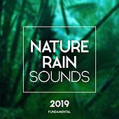 Nature Rain Sounds - EP by Nature Sounds (1)