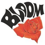 Size 08 de Bloom