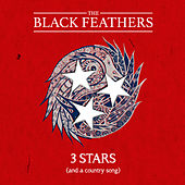 3 Stars (And a Country Song) di The Black Feathers