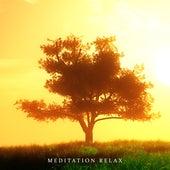 Meditation Relax: Yoga Music to Calm Down, Stress Relief, Pure Meditation, Inner Harmony, Ambient Chill, Lounge de Meditação e Espiritualidade Musica Academia