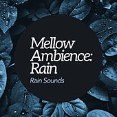 Mellow Ambience: Rain by Rain Sounds