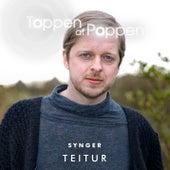 Toppen Af Poppen Synger Teitur von Various Artists