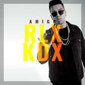 Rlx Kdx von Amigo