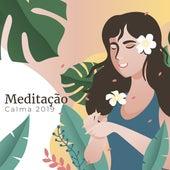 Meditação Calma 2019 de Meditación Música Ambiente