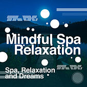Mindful Spa Relaxation de Relaxation and Dreams Spa