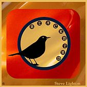 Blackbird de Steve Lighton