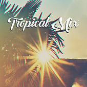 Tropical Mix: Summer Ibiza, Pure Relaxation, Relax Under Palms, Chill Out Lounge 2019 von Chillout Café