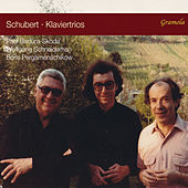 Schubert: Piano Trios Nos. 1 & 2 de Paul Badura-Skoda