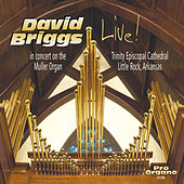 Bach, Liszt & Others: Works & Transcriptions for Organ (Live) de David Briggs