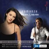 Mozart, W.A.: Schon Lacht Der Holde Fruhling / Spohr, L.: Overture To Der Berggeist / Seit Ich Ihn Gesehen (Romanze) von Various Artists