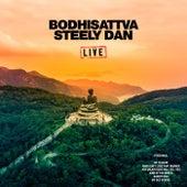 Bodhisattva (Live) de Steely Dan