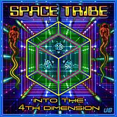 Into the 4Th Dimension by Space Tribe