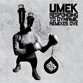 Responding To Dynamic Remixes Dve von Umek