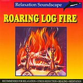 Roaring Log Fire by Anton Hughes