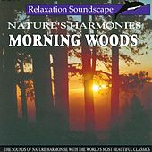 Morning Woods by Anton Hughes