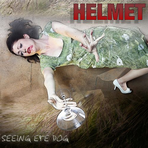 Seeing Eye Dog by Helmet