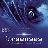 Forsenses - HP-SR 3D Soundtrack by Blu::Elements Project