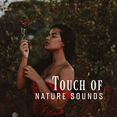 Touch of Nature Sounds: Pure Relaxation, Nature Music, Inner Bliss, Deep Harmony, Perfect Relax Zone by Nature Sounds (1)
