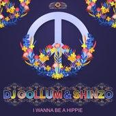 I Wanna Be a Hippie von DJ Gollum
