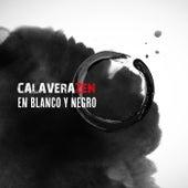 En Blanco y Negro by Calaverazen