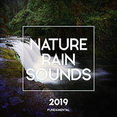 Nature Rain Sounds - Single von Rain Sounds (2)