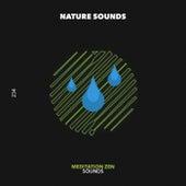 Meditation Zen Sounds - EP by Nature Sounds (1)