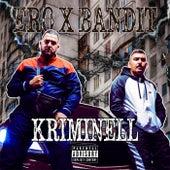 Kriminell by Ero