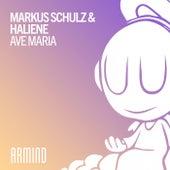 Ave Maria von Markus Schulz