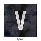 Voltaire Music Pres. V von Various Artists