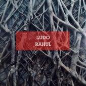 Rahul by Ludo